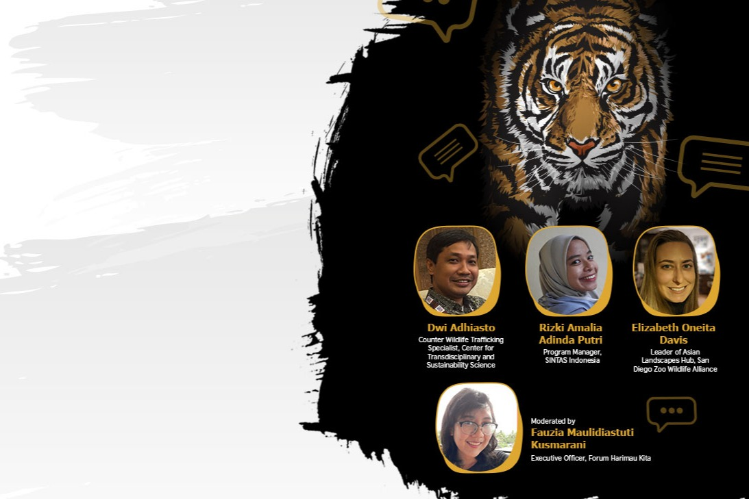 Tigers Day: Using Social Media to Protect Tigers